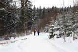 thumbnail - Winterlicher Weg zu den Heuberg Almen