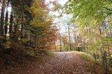thumbnail - Steigung vom Wasserburgertalweg zum Birkenloh