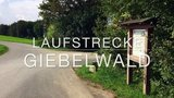 thumbnail - Laufstrecke über den Giebelwald – 13,3 Kilometer (Variante 9,9 km)