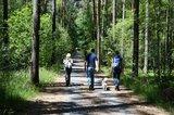 thumbnail - Wandern zum Schildberg