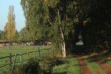 thumbnail - Weg entlang einer Weide
