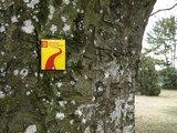 thumbnail - Beschriftung Altmühltal Panoramaweg