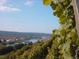 thumbnail - Blick auf die Erlenbacher Weinberge