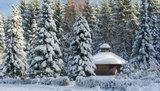 thumbnail - Grillhütte auf der Waldschneise