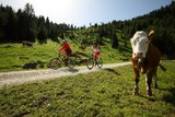 thumbnail - Mountainbiketour Pürschlinghaus