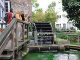 thumbnail - Paderborn: Stümpelsche Mühle