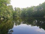 thumbnail - Teich im oberen Luttertal