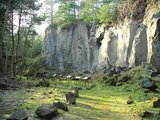 thumbnail - Vulkanpark-Radweg_Kottenheimer Winfeld