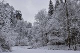 thumbnail - winterliches Polenztal