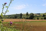 thumbnail - Weite Blicke ins Appelbachtal