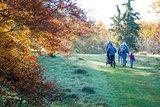 thumbnail - Naturbelassene Wege am Beutenlay