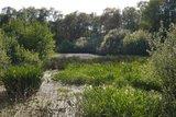 thumbnail - Schleifenroute - Kleines Naturschutzgebiet