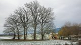 thumbnail - Kopfeichen und Steuobstwiesen am Hetzleser Berg