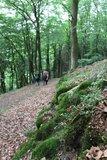 thumbnail - Unterwegs auf dem Bergweg zwischen Deifeld und Referinghausen.
