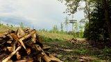thumbnail - Der Sendeturm auf der Eisernhardt