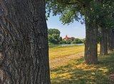 thumbnail - Maintalradweg