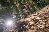 thumbnail - MTB Trail WaldMeister