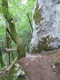 thumbnail - Wanderweg durch das Naturschtzgebiet Klamm im Altmühltal bei Riedenburg