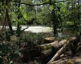 thumbnail - Schleifenroute - Curauer Moor