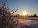 thumbnail - Winterwandern