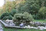 thumbnail - Teich im Karlspark