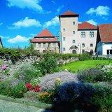 thumbnail - Burg Horn