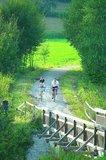 thumbnail - Radfahrer entlang des Regental-Radweges