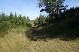 thumbnail - Teilweisen auf einem naturnahen Pfad geht es durch hohe Gräser.