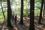 thumbnail - Aussichtspunkt Ehrenberger Bastei