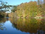 thumbnail - Zwei Wasserflächen werden im Naturschutzgebiet durch einen Damm angestaut.