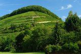 thumbnail - Der Castellberg von Sulzburg aus