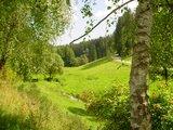 thumbnail - Im Zinsbachtal bei Pfalzgrafenweiler