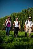 thumbnail - Wandern im Spalter Hügelland