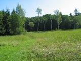 thumbnail - Naturschutzgebiet Sippenauer Moor