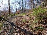 thumbnail - Schöne Trails zurück nach Bad Harzburg