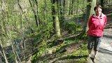 thumbnail - Blick hinunter auf den Saubach und Elgin