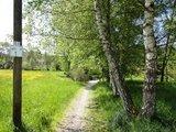 thumbnail - Radwegstück entlang des Waldbahn-Radweges