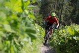 thumbnail - Bike Spaß ohne Ende - Der BaySF Mtb Trail