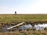 thumbnail - Moor am Großen Jasmunder Bodden mit Hochstand und Kitesurfer.