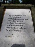 thumbnail - Waldwiesen