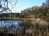 thumbnail - Am Ostufer des Frechensees ist der Blick auf den See häufig durch Bäume verdeckt.