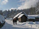 thumbnail - Winter-Wanderweg in der Mannenbachheide
