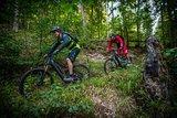 thumbnail - Mountainbiker auf Trail bei Speyerbrunn Tour 5 Lambrecht