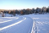 thumbnail - Mannenbachheide in der Winter-Abendsonne
