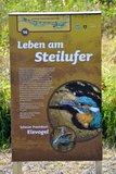 thumbnail - Infotafel: Leben am Steinufer