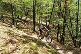 thumbnail - Trail von der Herzogseiche zum Breitengescheidt